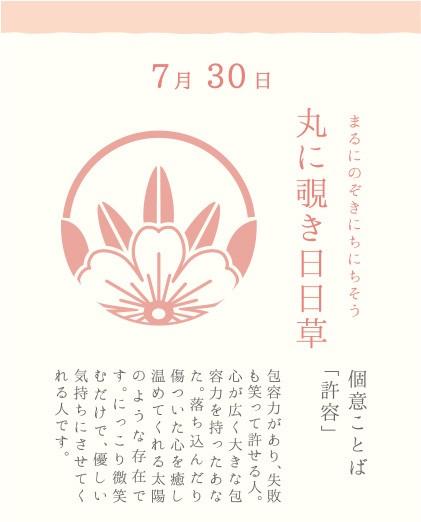 7月30日 丸に覗き日日草(まるにのぞきにちにちそう)
