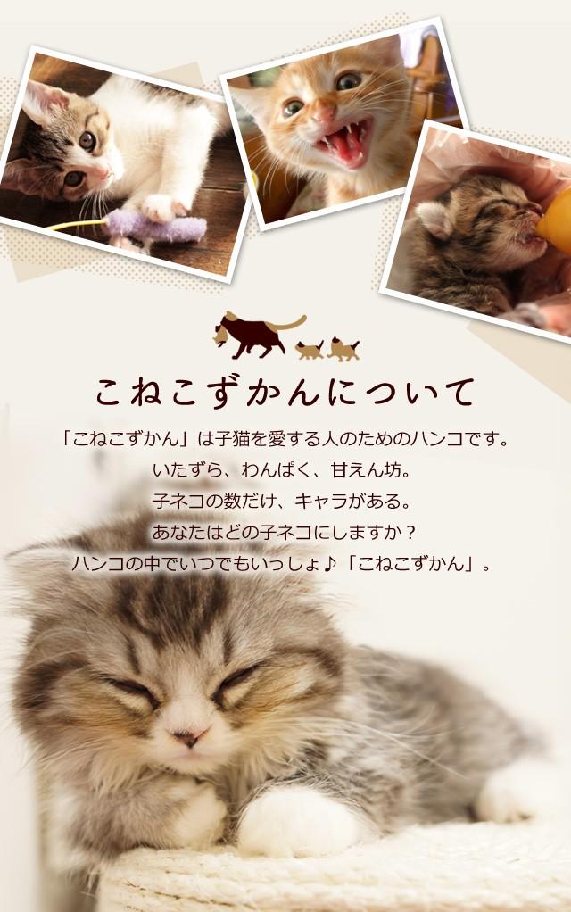 こねこずかんについて「こねこずかん」は子猫を愛する人のためのハンコです。