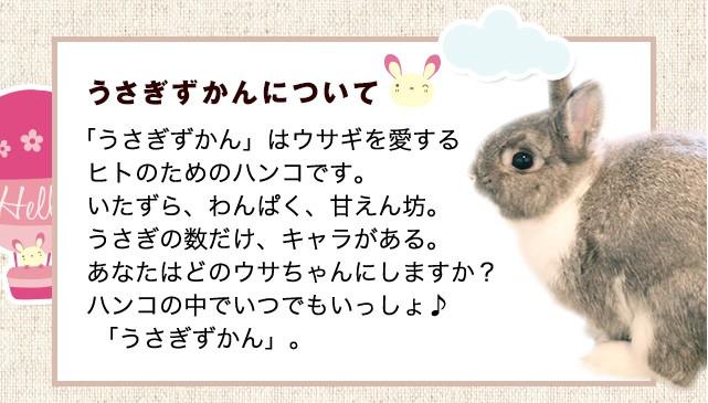 うさぎずかんについて「うさぎずかん」はウサギを愛するヒトのためのハンコです。気まぐれ、わんぱく、甘えん坊。ウサギの数だけ、キャラがある。あなたはどのウサギちゃんにしますか?ハンコの中でいつでもいっしょ♪ 「うさぎずかん」。