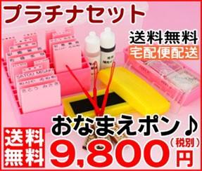 プラチナセット 送料無料 宅配便配送 おなまえぽん 9800円