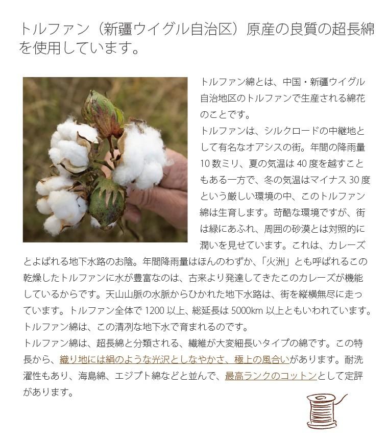 新疆綿 トルファン ウイグルの超長綿