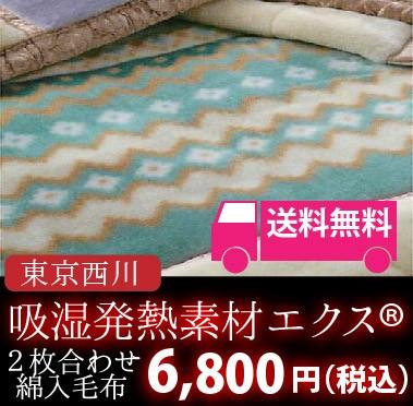 東京西川のルミディ エクス綿入り2枚合わせ毛布