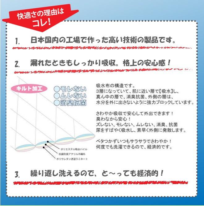 中重失禁 トランクス しっかり安心タイプ男性用 100cc/03