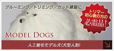 人工被毛モデル犬(犬型人形)