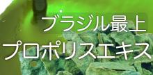 グリーンプロポリスエキス