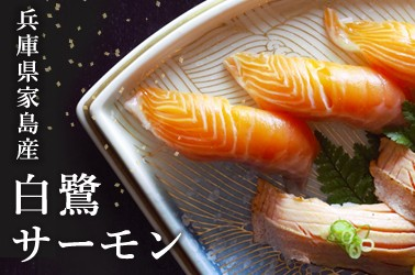 丸魚水産 白鷺サーモン