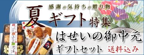 お中元ギフトセット 送料無料 高級蒲鉾・さつま揚げ8種13枚分入