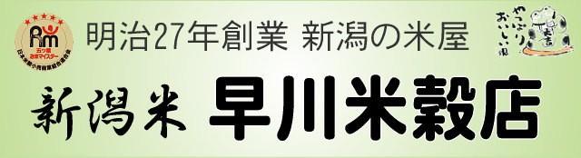 新潟米 早川米穀店 ロゴ
