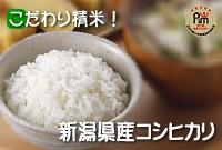こだわり精米!新潟県産コシヒカリ