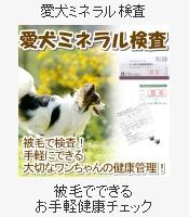 ペットのミネラル状態を検査 愛犬ミネラル検査