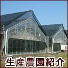 生産農園紹介