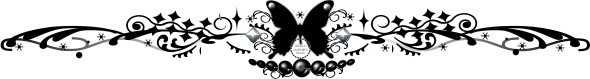 セパーレーター蝶々