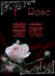 薔薇ローズバラ