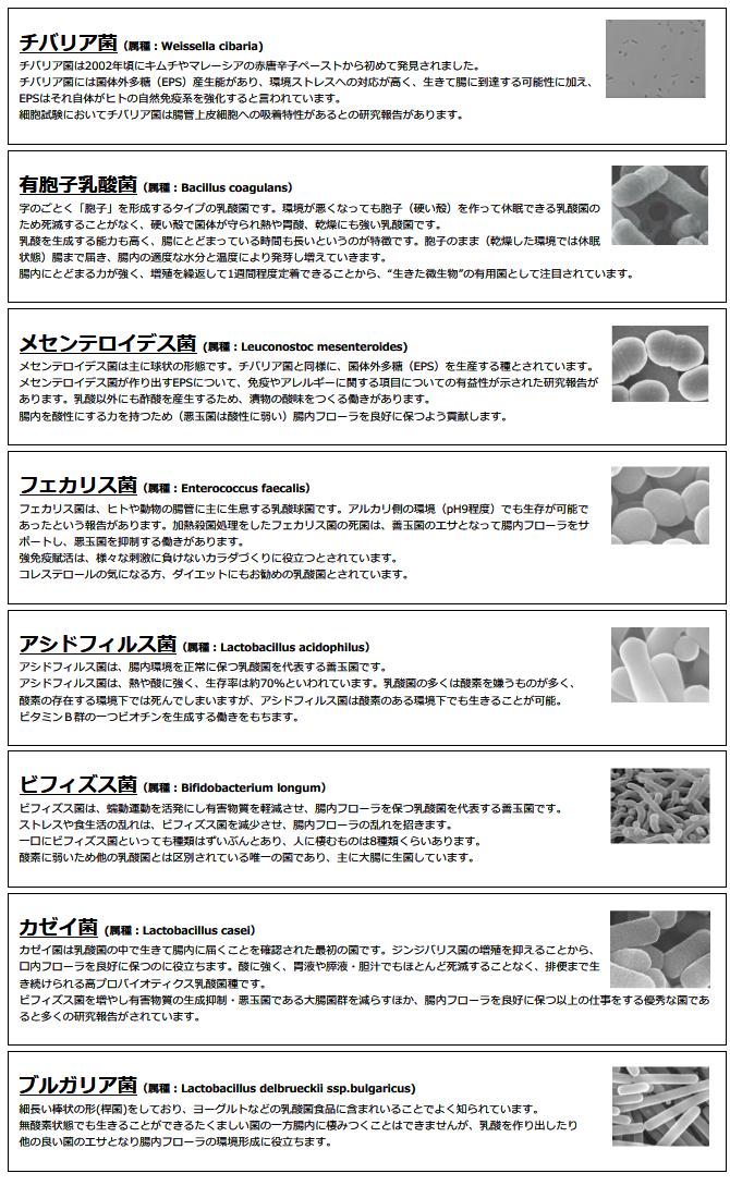 8種の異なる種類の菌の特徴