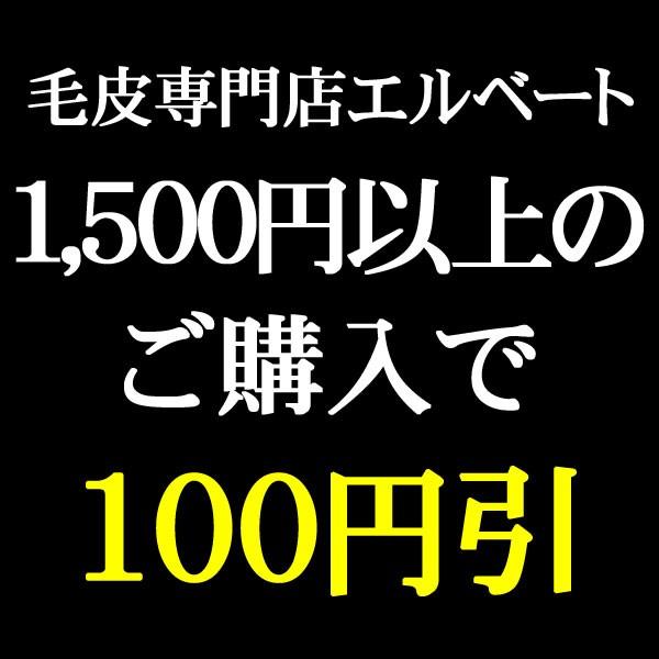 期間限定★1,500円以上のお買い物に使える100円OFFクーポン