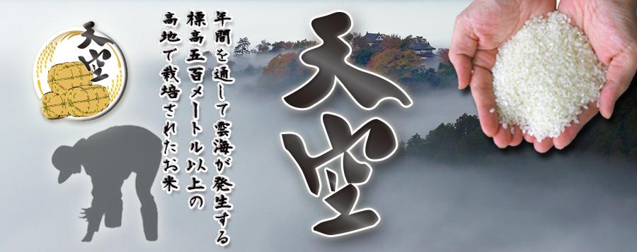 雲海が育んだ岡山びほく産コシヒカリ