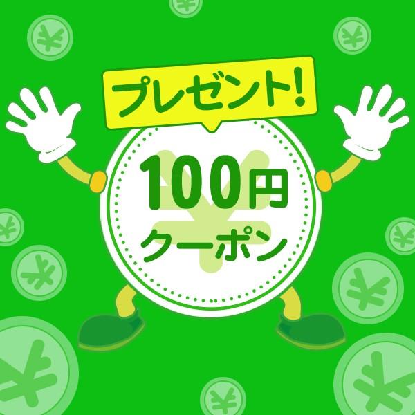 今なら500円以上のお買い上げで、100円割引きクーポンプレゼント!!