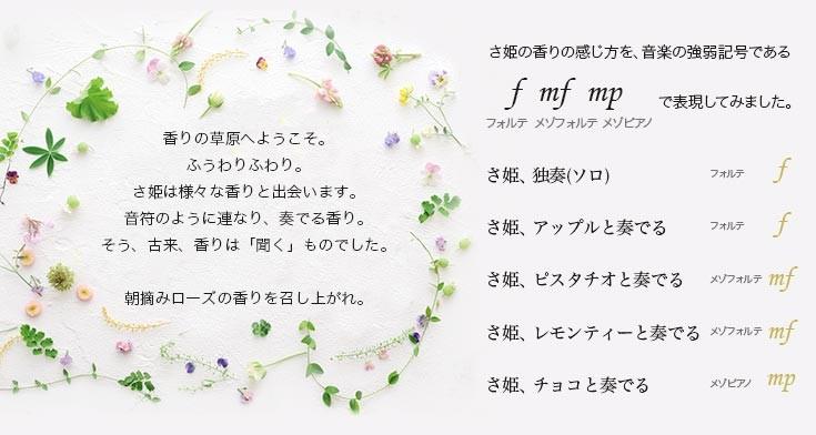 さ姫の香りの感じ方を、音楽の強弱記号で表現してみました。