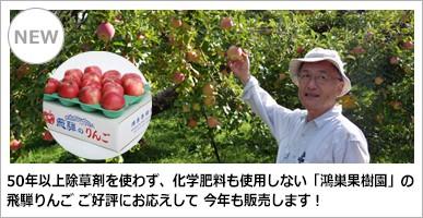 鴻巣果樹園 おまかせリンゴ