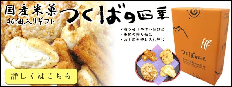 国産米菓贈答品つくばの四季