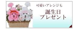 誕生日・プレゼント・記念日・ギフト