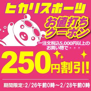 【ヒカリ★お買い得クーポン】5千円以上購入で250円OFFクーポン(3)