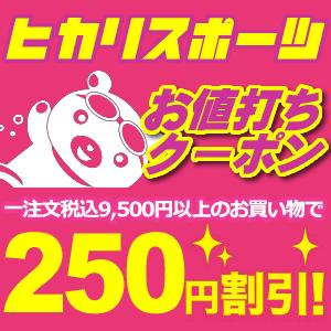 【選べるクーポン】9,500円以上購入で250円OFFクーポン