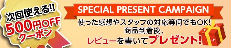 レビュー500円OFF