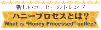 新しいコーヒーのトレンド【ハニープロセスとは】