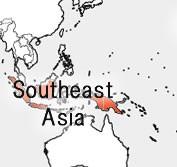 産地で選ぶ【東南アジア】