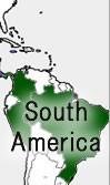 産地で選ぶ【南米】