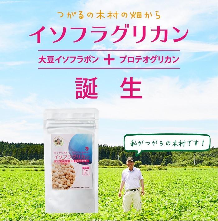 イソフラグリカン・大豆イソフラボン・プロテオグリカン・サプリ