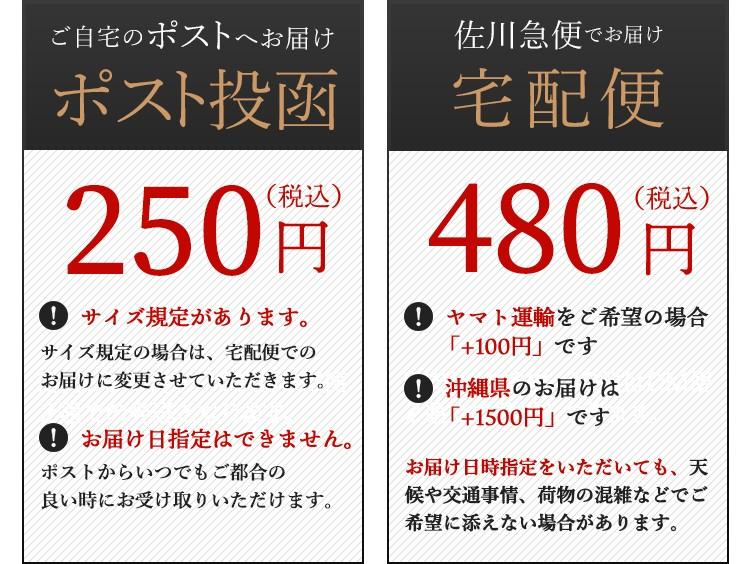 ネコポス250円 宅配便480円
