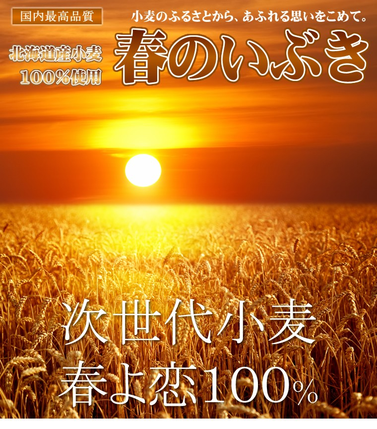 【送料無料】春のいぶき 大袋(25kg)