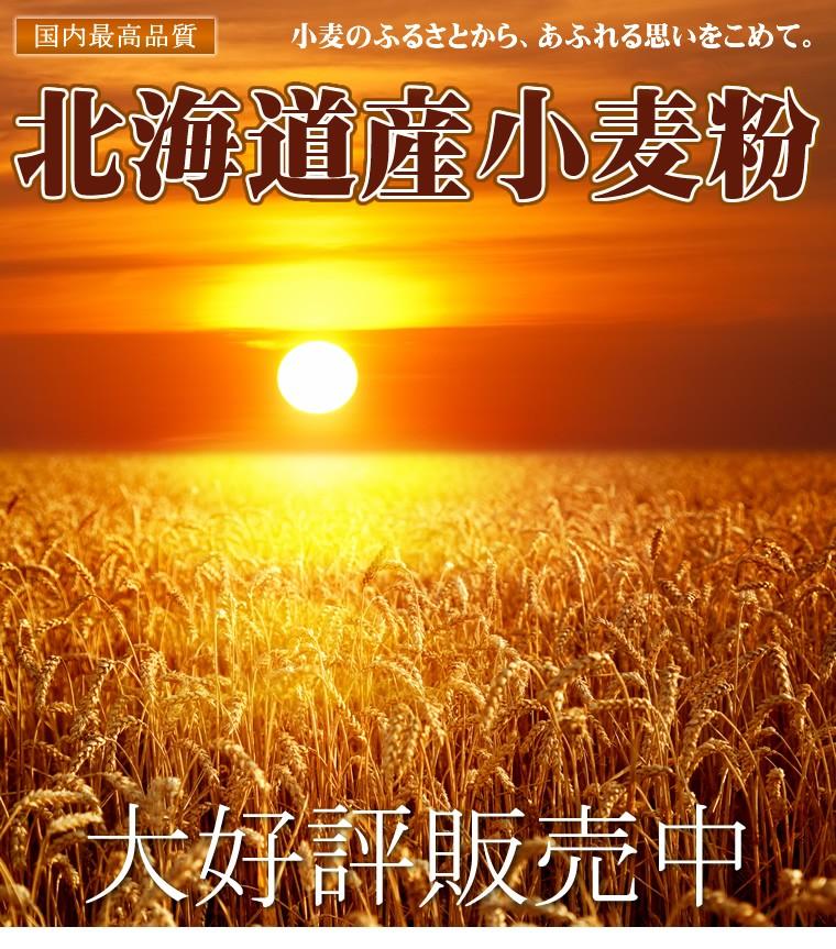 【送料無料】江別製粉 北海道産 小麦粉