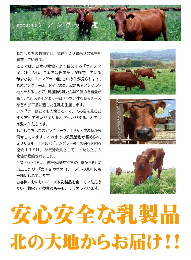 北海道 牧家(ボッカ)
