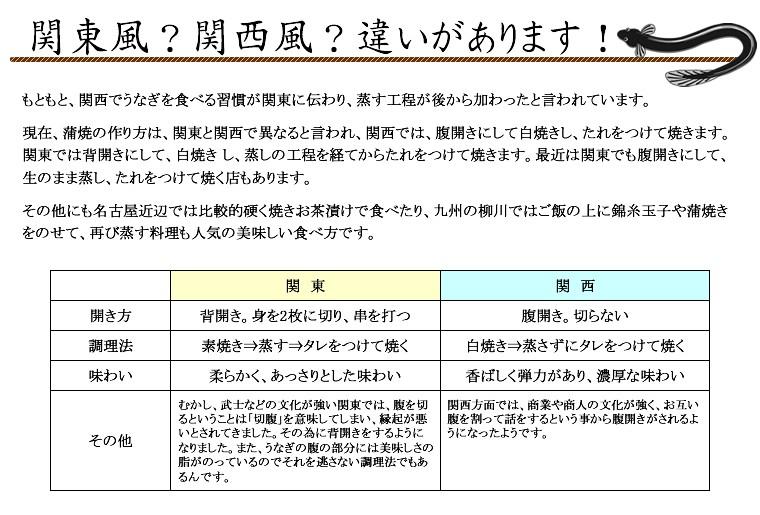 【最高級】静岡県 浜松・浜名湖産 うなぎセット(蒲焼 2尾入り)