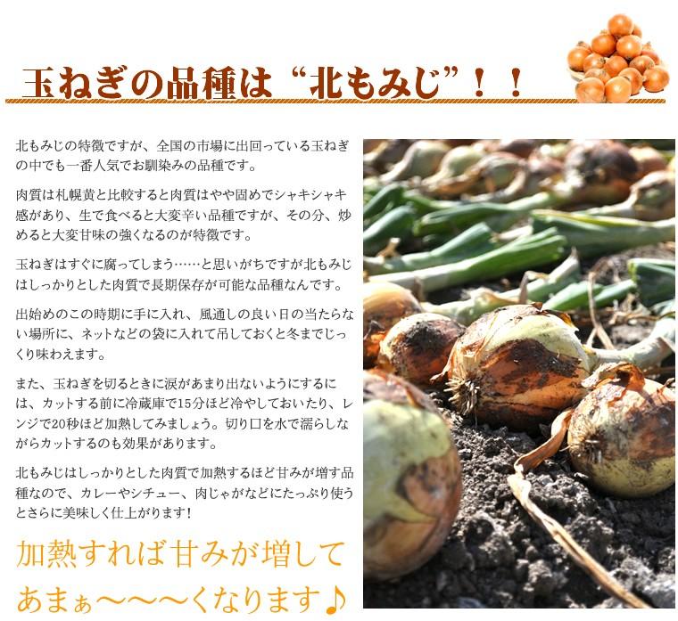 北海道産 玉ねぎ 5kg