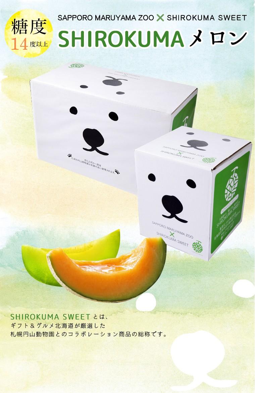 SHIROKUMA SWEET MELON