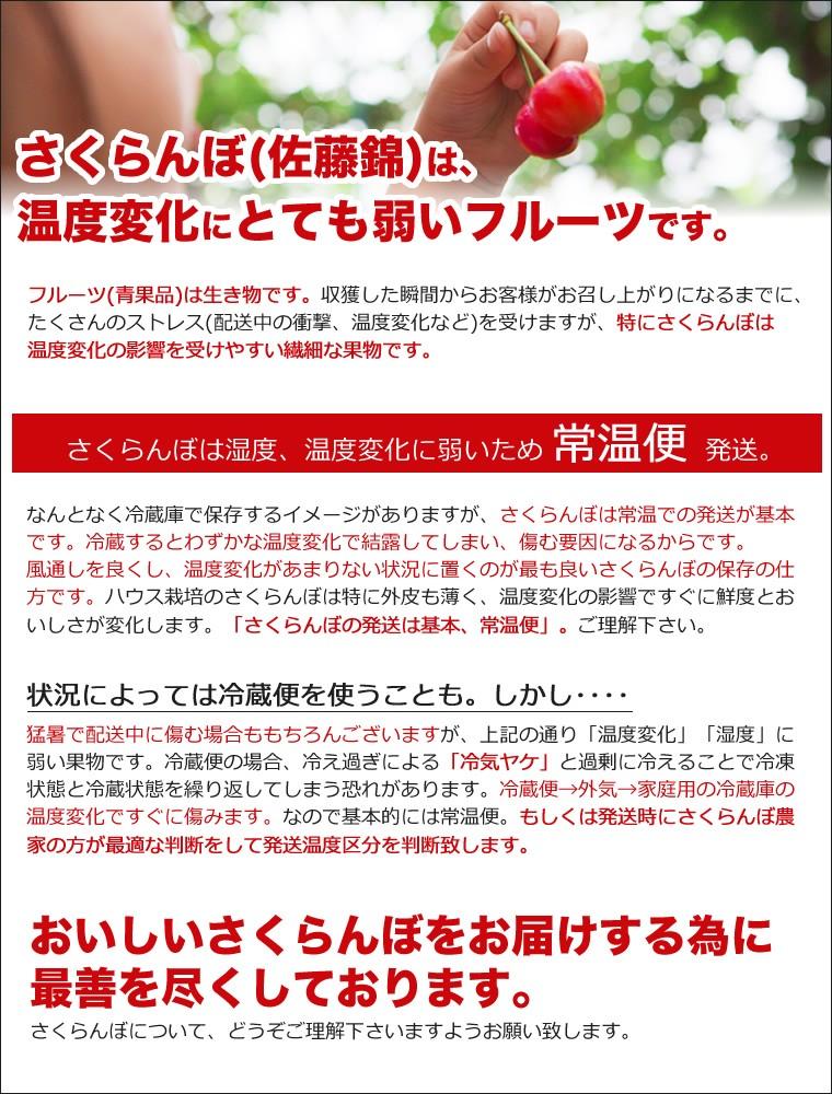 【送料無料】さくらんぼ 佐藤錦『プレミアムボックス』