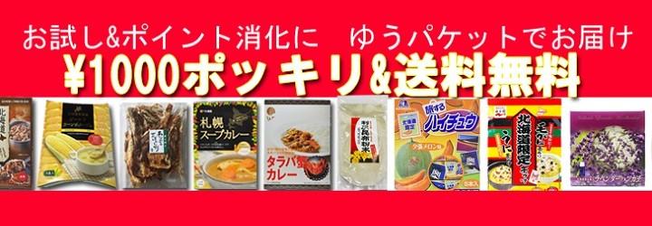 1000円ポッキリと送料無料