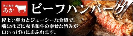 神内ファーム21 神内和牛あかビーフハンバーグ