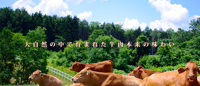 大自然の中で育まれた牛肉本来の味わい