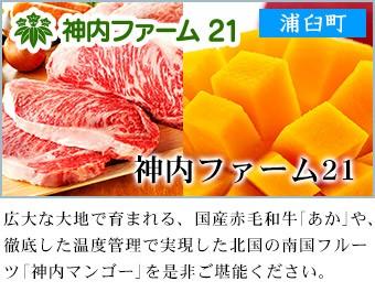 浦臼町 神内ファーム21