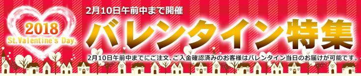 お土産通販北海道ギフトバザールのバレンタイン特集