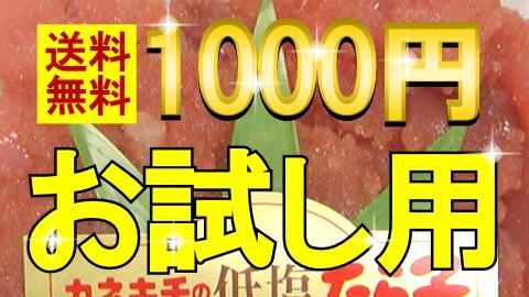 1000円送料無料お試したらこ