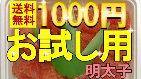 1000円送料無料お試し明太子