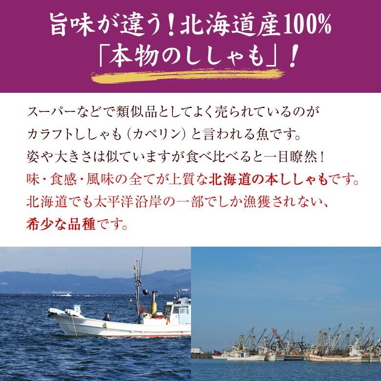 旨味が違う!北海道産100%「本物のししゃも」!