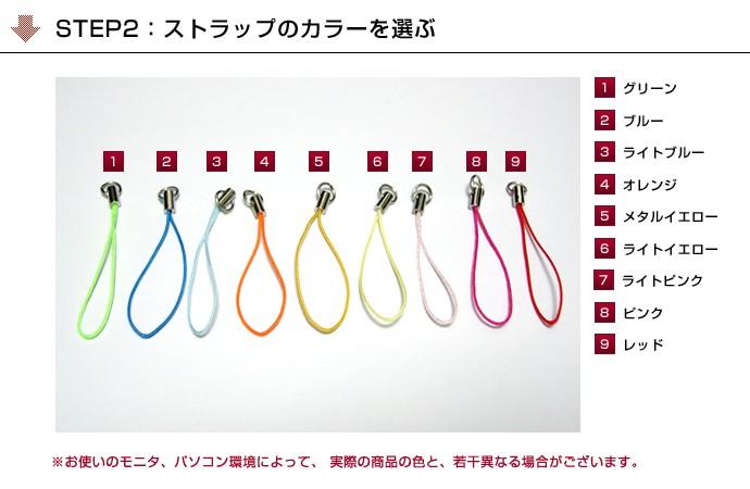 STEP2:カラーを選ぶ/9種類