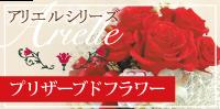 プリザーブドフラワー(アリエルシリーズ)